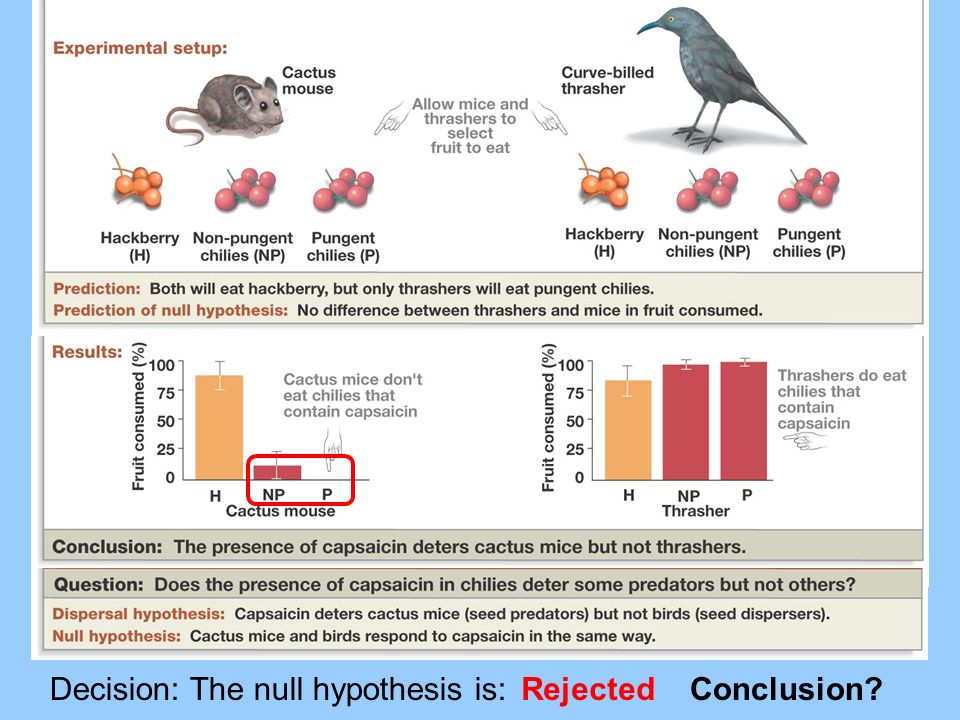 Decision: The null hypothesis is:RejectedConclusion?