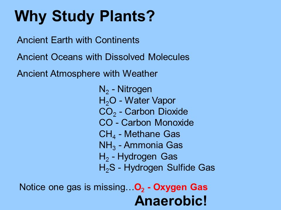 Why Study Plants? Ancient Earth with Continents Ancient Oceans with Dissolved Molecules Ancient Atmosphere with Weather N 2 - Nitrogen H 2 O - Water V