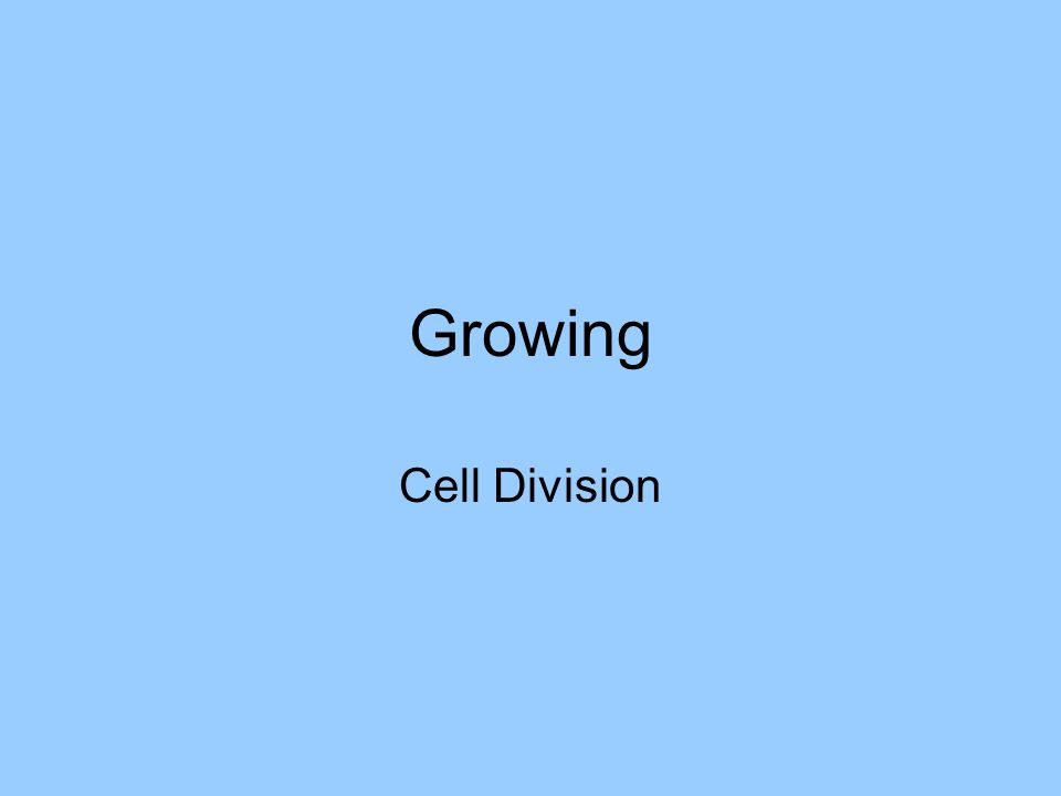 Growing Cell Division