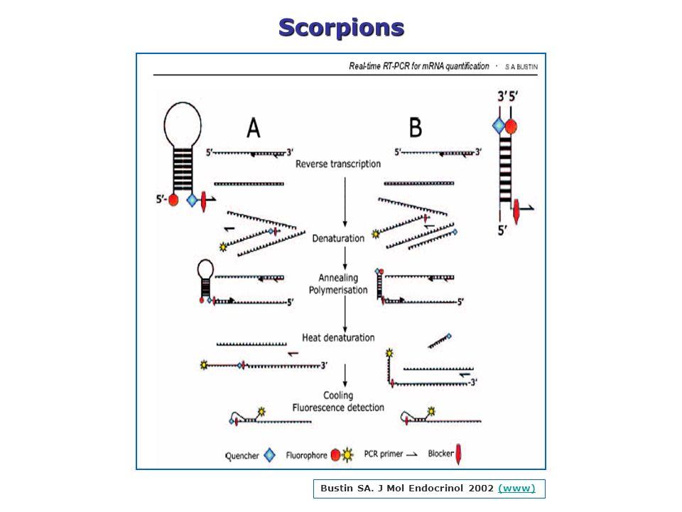 Bustin SA. J Mol Endocrinol 2002 (www)(www)Scorpions