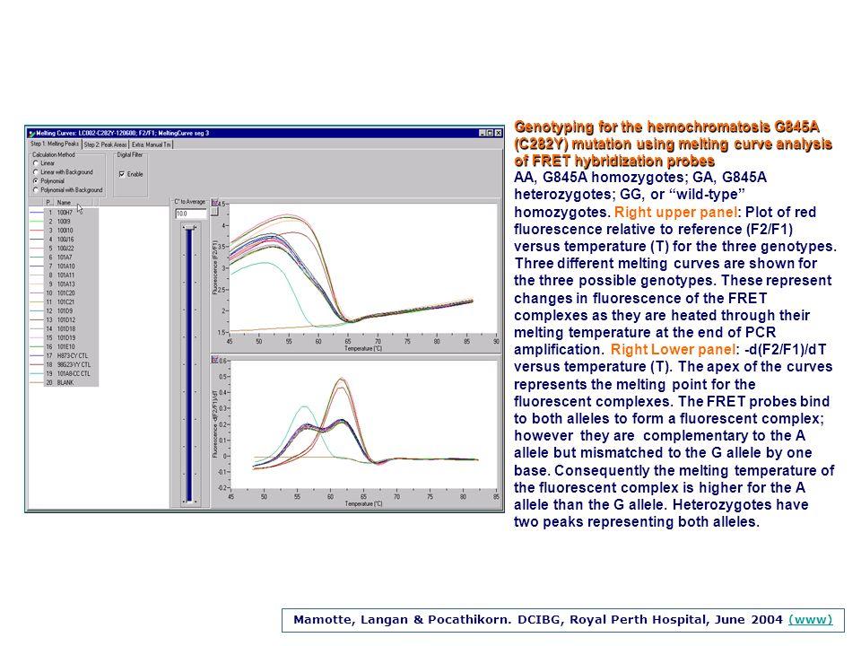 Mamotte, Langan & Pocathikorn. DCIBG, Royal Perth Hospital, June 2004 (www) (www) Genotyping for the hemochromatosis G845A (C282Y) mutation using melt