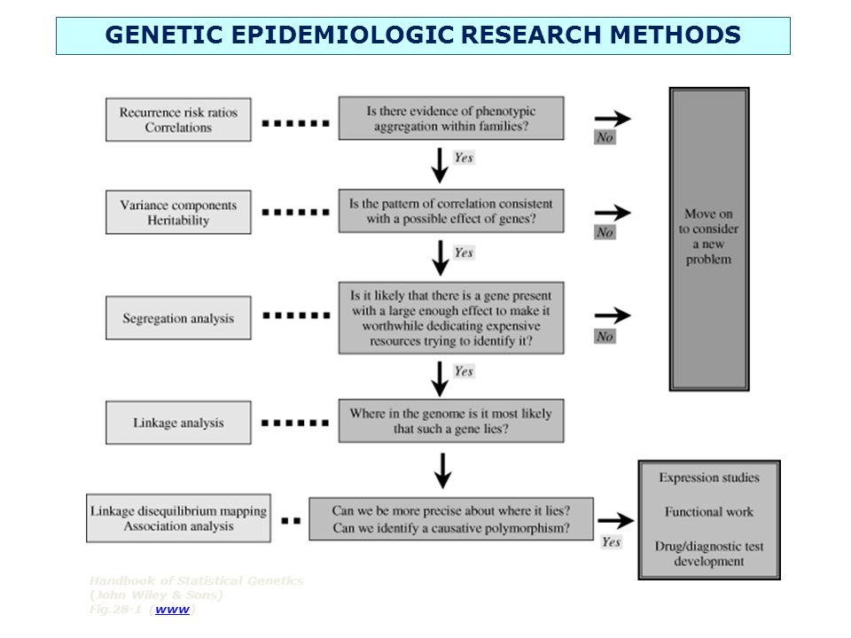 Handbook of Statistical Genetics (John Wiley & Sons) Fig.28-1 (www)www GENETIC EPIDEMIOLOGIC RESEARCH METHODS