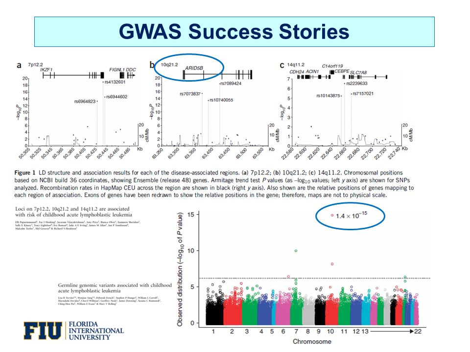 GWAS Success Stories