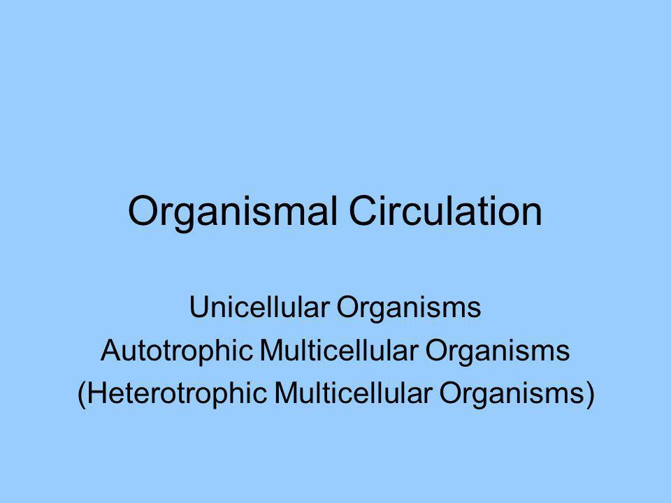 Organismal Circulation Unicellular Organisms Autotrophic Multicellular Organisms (Heterotrophic Multicellular Organisms)