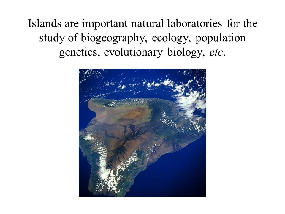 Islands are important natural laboratories for the study of biogeography, ecology, population genetics, evolutionary biology, etc.