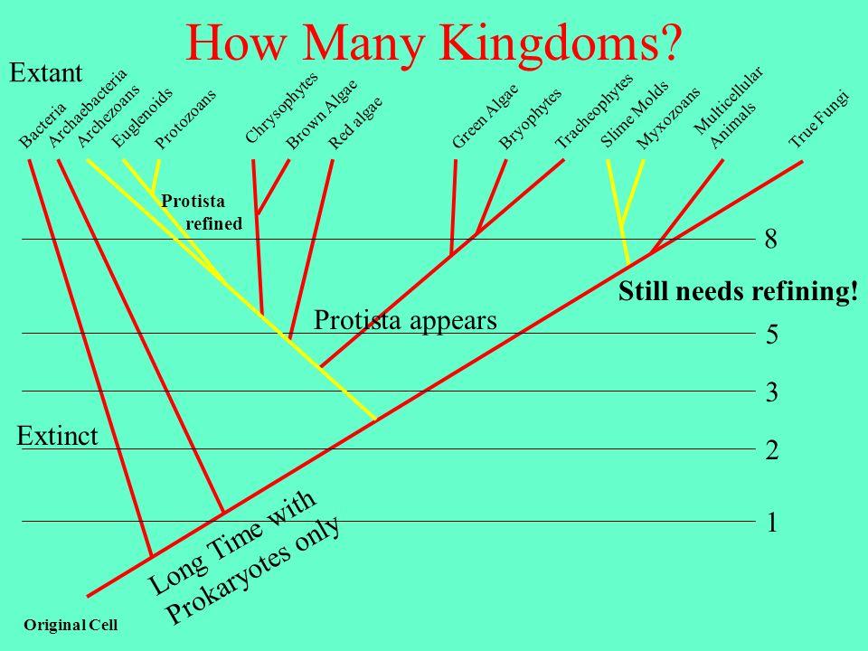 How Many Kingdoms.