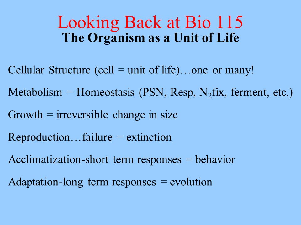 Looking Back at Bio 115 The Organism as a Unit of Life Cellular Structure (cell = unit of life)…one or many! Metabolism = Homeostasis (PSN, Resp, N 2