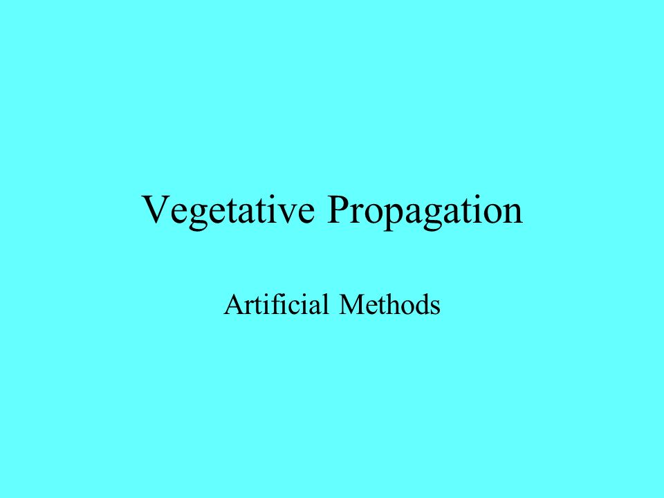 Vegetative Propagation Artificial Methods