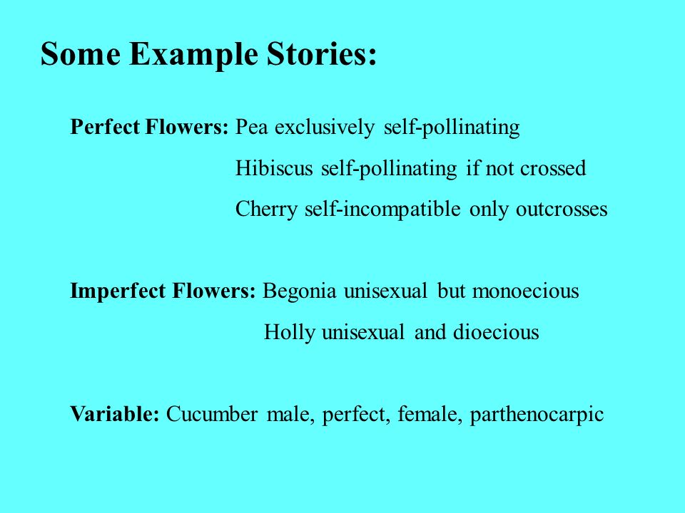 Some Example Stories: Perfect Flowers: Pea exclusively self-pollinating Hibiscus self-pollinating if not crossed Cherry self-incompatible only outcros