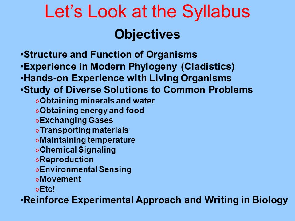 Lets Look at the Syllabus Objectives Structure and Function of Organisms Experience in Modern Phylogeny (Cladistics) Hands-on Experience with Living O