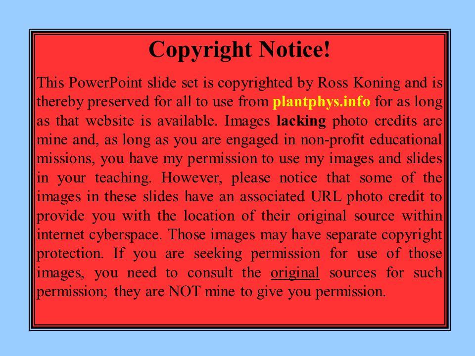 Copyright Notice.