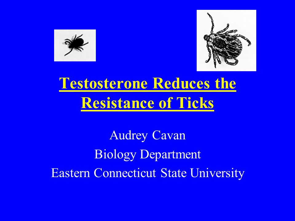 Testosterone Reduces the Resistance of Ticks Audrey Cavan Biology Department Eastern Connecticut State University