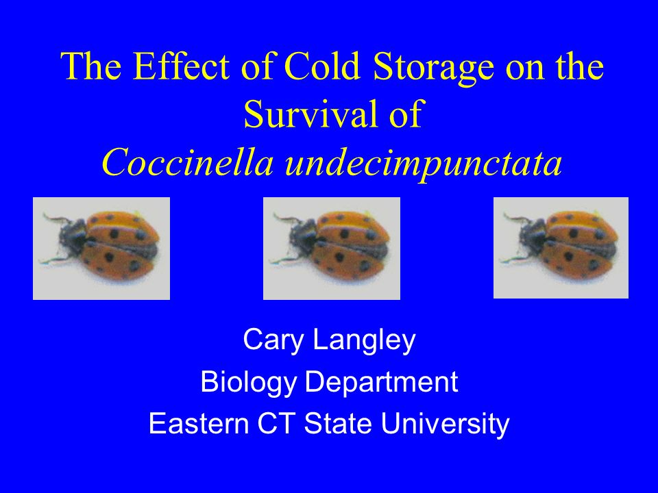 Possible storage of Coccinella undecimpunctata (Col., Coccinellidae) under low temperature and its effect on some biological characteristics A.