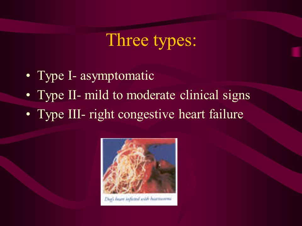 Three types: Type I- asymptomatic Type II- mild to moderate clinical signs Type III- right congestive heart failure
