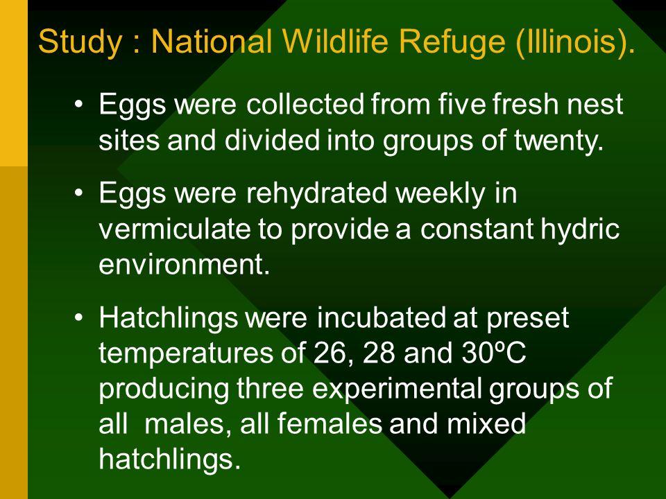 Study : National Wildlife Refuge (Illinois).