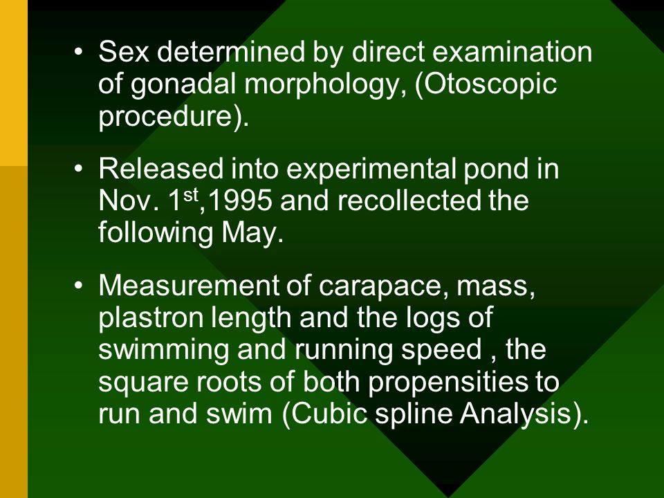 Sex determined by direct examination of gonadal morphology, (Otoscopic procedure).