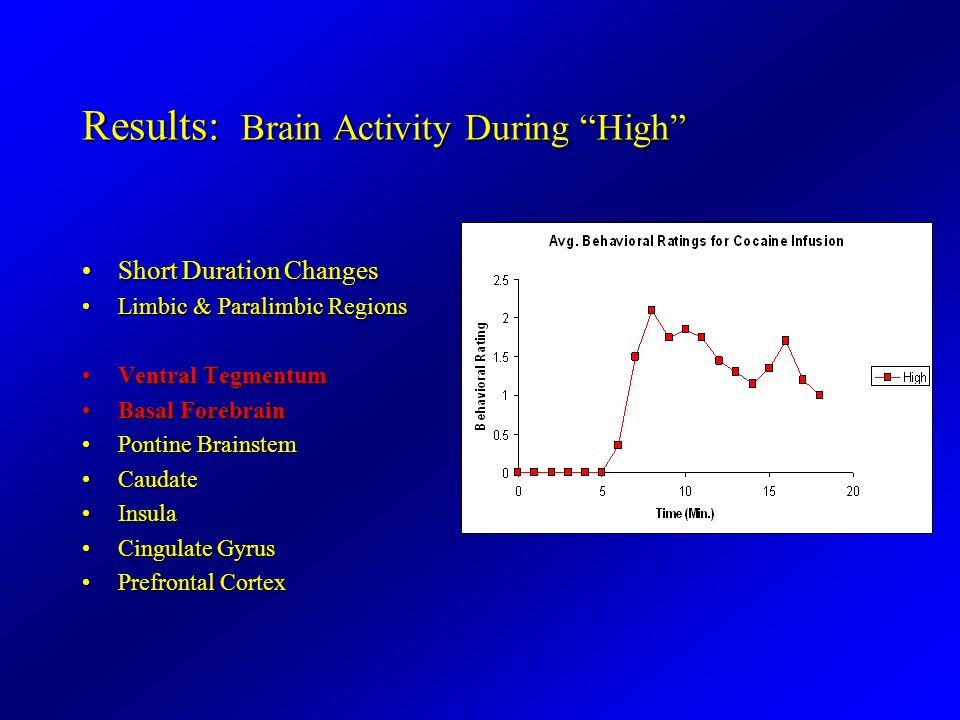 Results: Brain Activity During High Short Duration ChangesShort Duration Changes Limbic & Paralimbic RegionsLimbic & Paralimbic Regions Ventral Tegmen