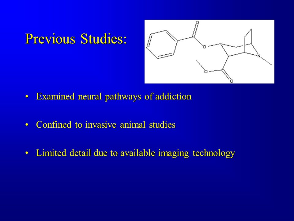 Previous Studies: ExaminedExamined neural pathways of addiction ConfinedConfined to invasive animal studies LimitedLimited detail due to available imaging technology