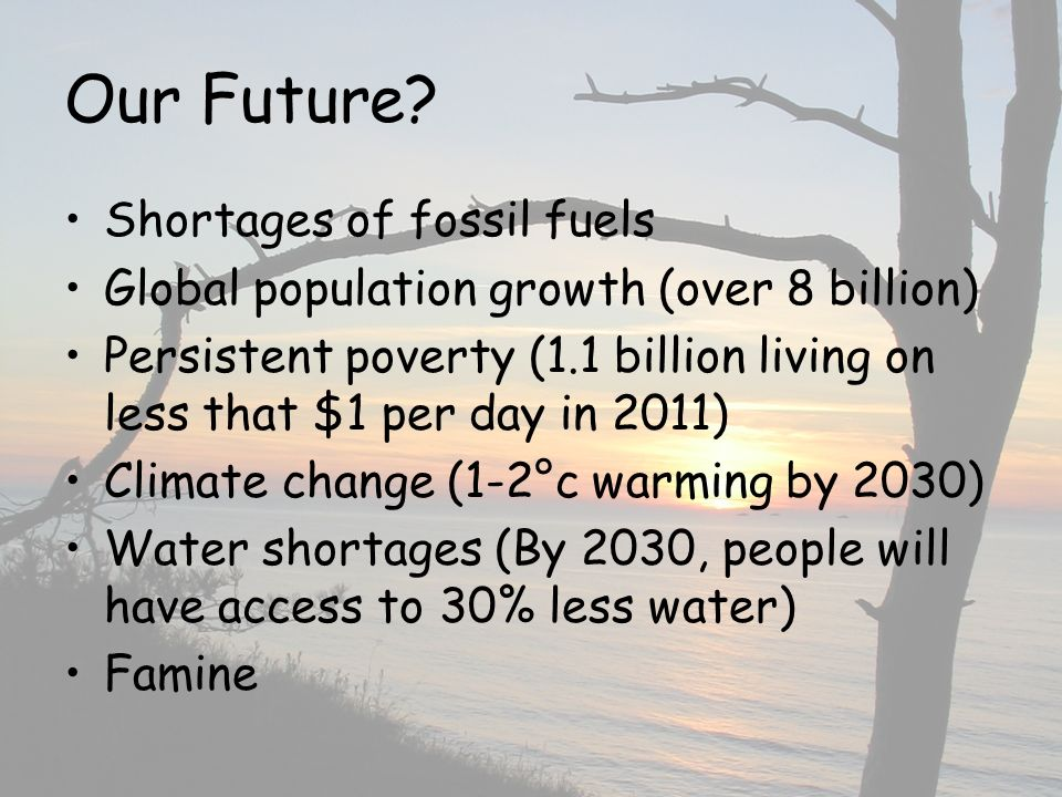 Our Future? Shortages of fossil fuels Global population growth (over 8 billion) Persistent poverty (1.1 billion living on less that $1 per day in 2011