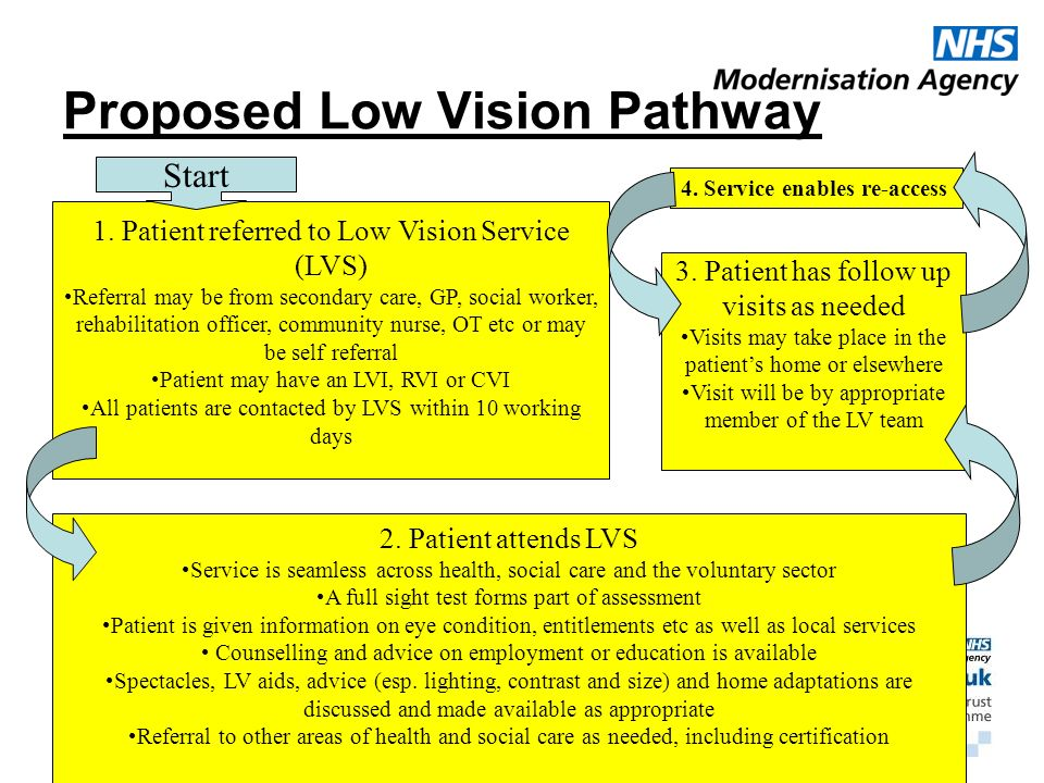 Proposed Low Vision Pathway(2) Establishment of a key worker model Registration not a pre-requisite Medical assessment not a pre-requisite Services enable re-access and re- assessment Better utilisation of relevant health & social care professionals