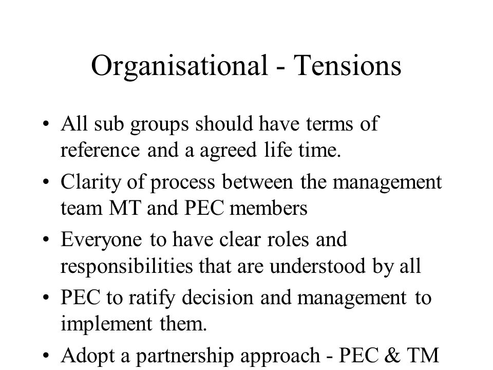 Organisational - Tensions All sub groups should have terms of reference and a agreed life time.