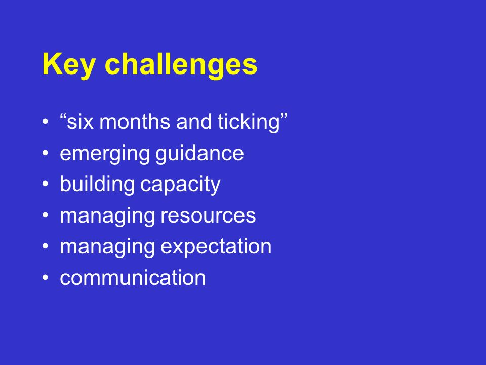 Key challenges six months and ticking emerging guidance building capacity managing resources managing expectation communication