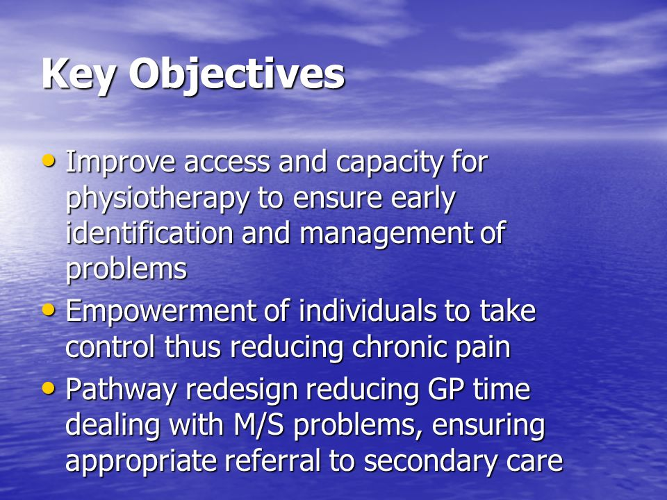 Key Objectives Improve access and capacity for physiotherapy to ensure early identification and management of problems Improve access and capacity for