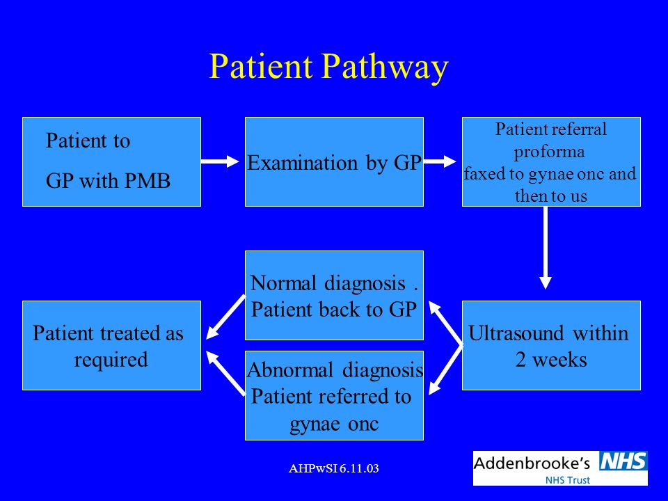 AHPwSI 6.11.03 Patient Pathway Patient to GP with PMB Examination by GP Patient referral proforma faxed to gynae onc and then to us Ultrasound within