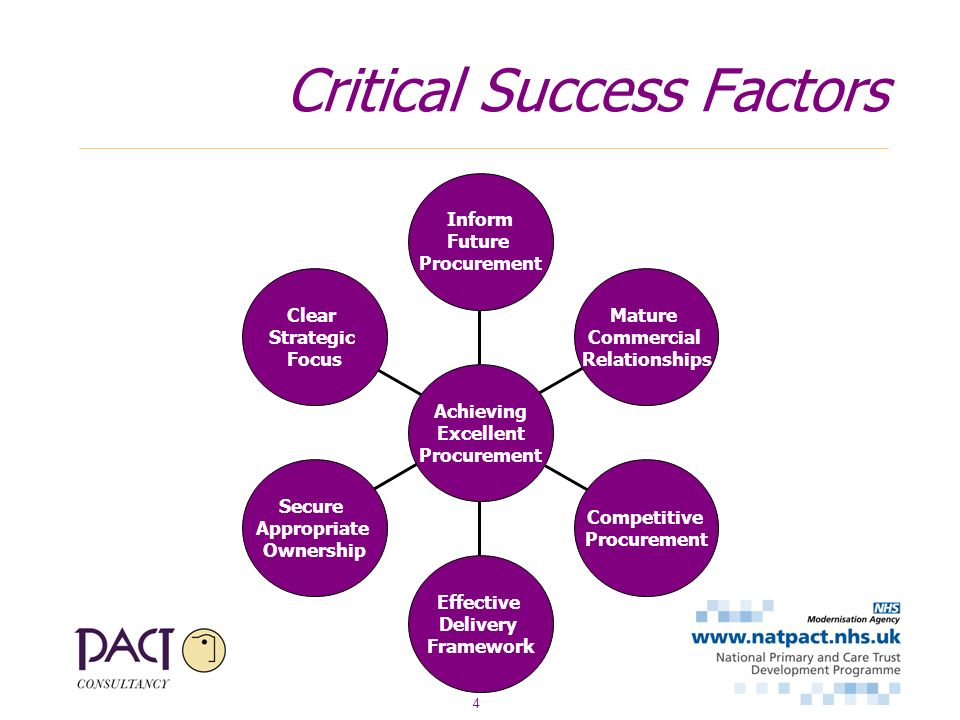 4 Critical Success Factors Clear Strategic Focus Secure Appropriate Ownership Effective Delivery Framework Competitive Procurement Mature Commercial Relationships Inform Future Procurement Achieving Excellent Procurement
