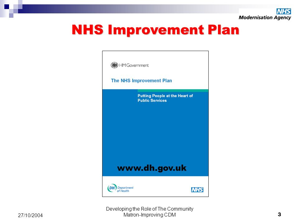 Developing the Role of The Community Matron-Improving CDM3 27/10/2004 www.dh.gov.uk NHS Improvement Plan