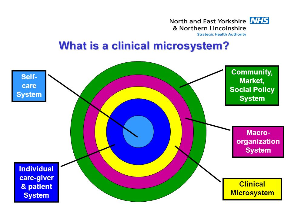 Community, Market, Social Policy System Macro- organization System Clinical Microsystem Individual care-giver & patient System Self- care System