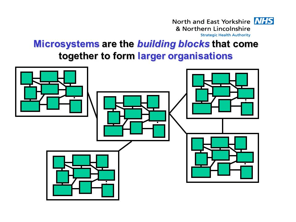Microsystems are the building blocks that come together to form larger organisations