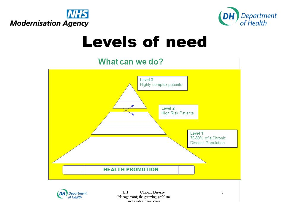 Levels of need HEALTH PROMOTION Level 3 Highly complex patients Level 2 High Risk Patients What can we do.