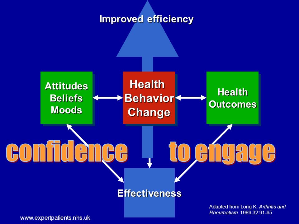 www.expertpatients.nhs.uk Improved efficiency Effectiveness HealthOutcomesHealthOutcomesAttitudesBeliefsMoodsAttitudesBeliefsMoodsHealthBehaviorChangeHealthBehaviorChange Adapted from Lorig K, Arthritis and Rheumatism.
