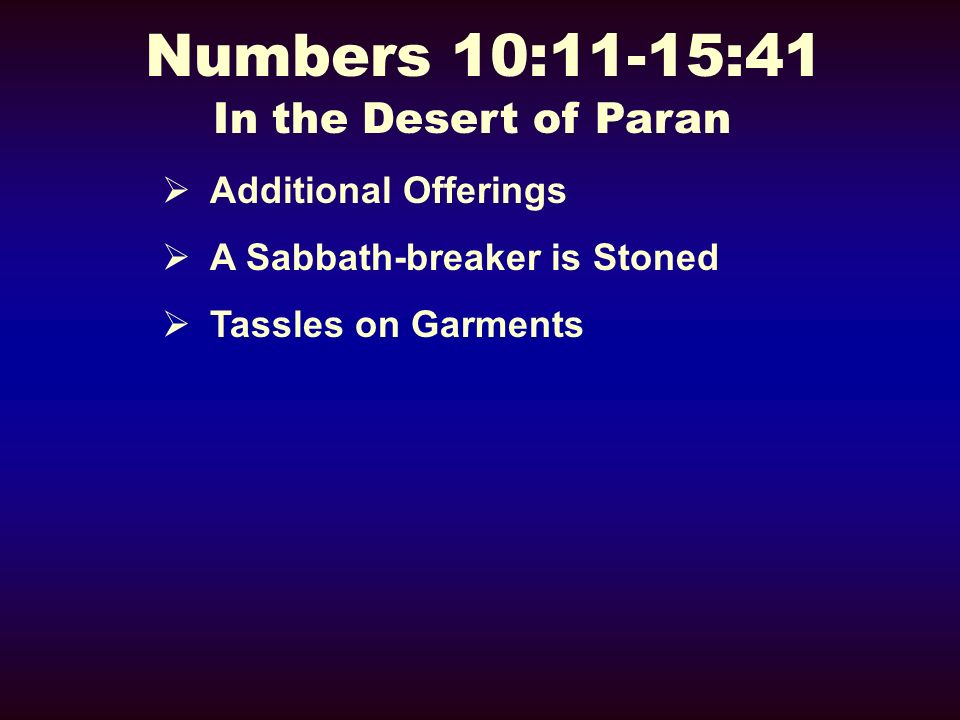 Numbers 10:11-15:41 In the Desert of Paran Additional Offerings A Sabbath-breaker is Stoned Tassles on Garments