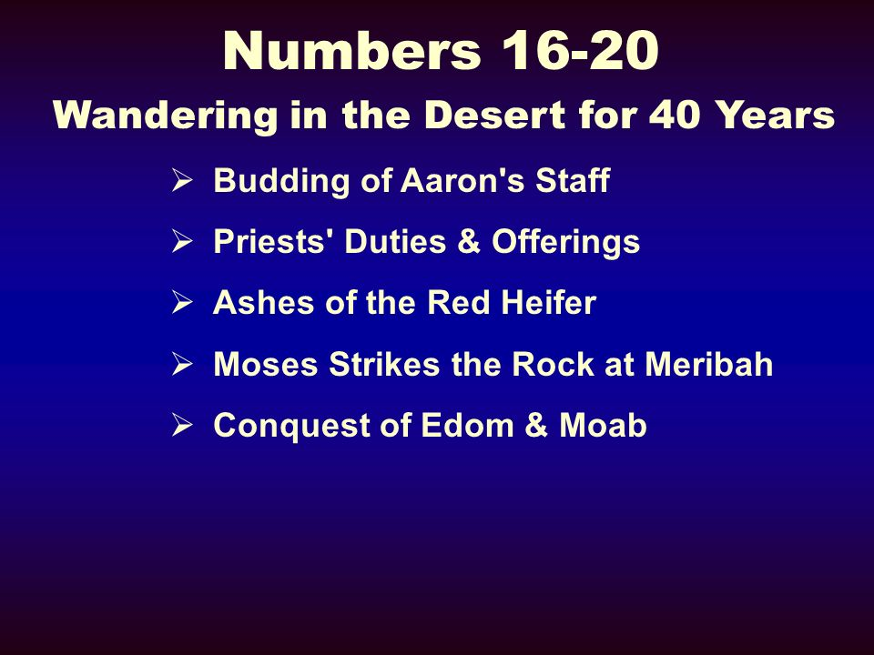 Numbers 16-20 Wandering in the Desert for 40 Years Budding of Aaron s Staff Priests Duties & Offerings Ashes of the Red Heifer Moses Strikes the Rock at Meribah Conquest of Edom & Moab