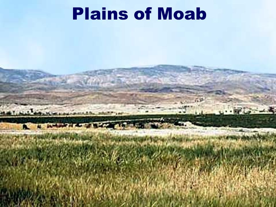 4 Plains of Moab
