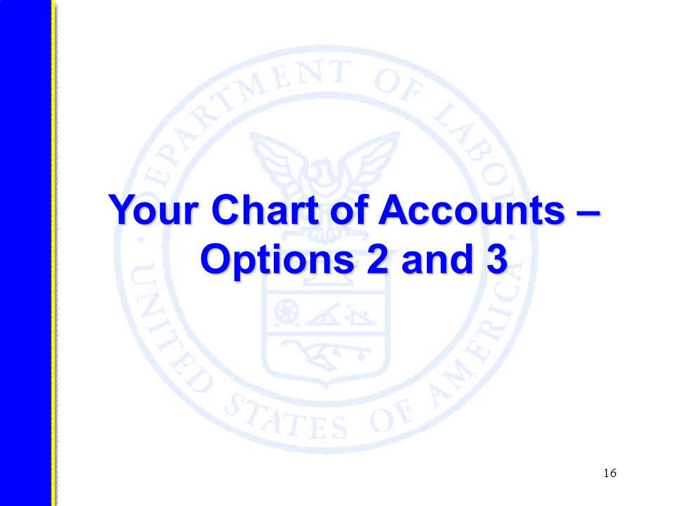 16 Your Chart of Accounts – Options 2 and 3