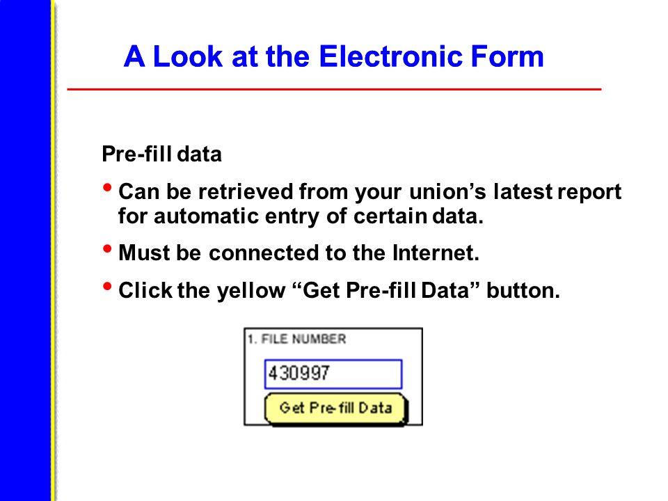 A Look at the Electronic Form Pre-fill data Can be retrieved from your unions latest report for automatic entry of certain data. Must be connected to