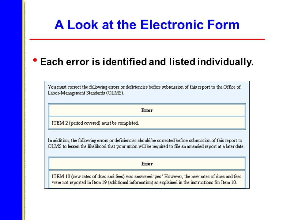 A Look at the Electronic Form Each error is identified and listed individually.