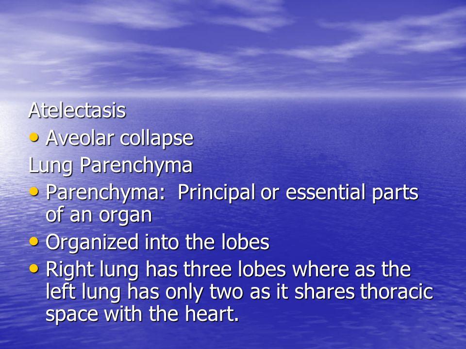Atelectasis Aveolar collapse Aveolar collapse Lung Parenchyma Parenchyma: Principal or essential parts of an organ Parenchyma: Principal or essential