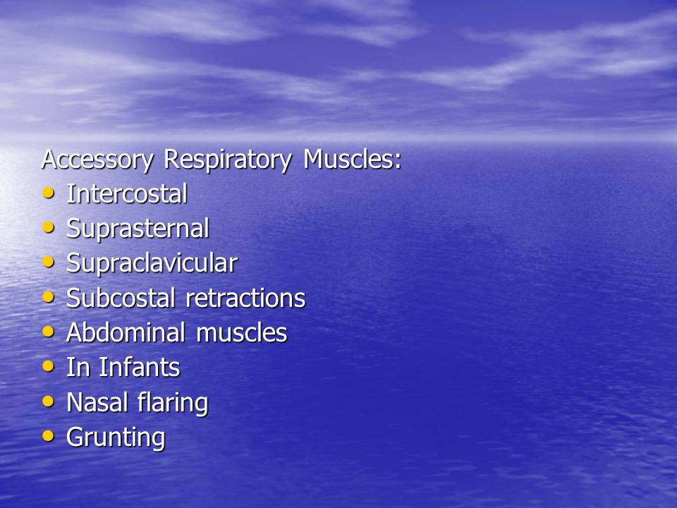 Accessory Respiratory Muscles: Intercostal Intercostal Suprasternal Suprasternal Supraclavicular Supraclavicular Subcostal retractions Subcostal retra