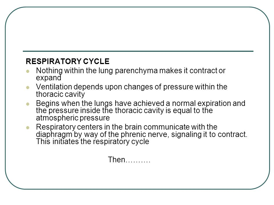 RESPIRATORY CYCLE Nothing within the lung parenchyma makes it contract or expand Ventilation depends upon changes of pressure within the thoracic cavity Begins when the lungs have achieved a normal expiration and the pressure inside the thoracic cavity is equal to the atmospheric pressure Respiratory centers in the brain communicate with the diaphragm by way of the phrenic nerve, signaling it to contract.