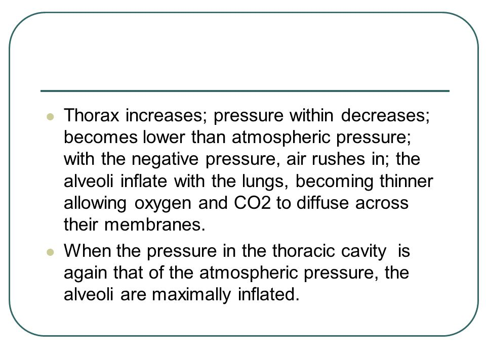 Thorax increases; pressure within decreases; becomes lower than atmospheric pressure; with the negative pressure, air rushes in; the alveoli inflate with the lungs, becoming thinner allowing oxygen and CO2 to diffuse across their membranes.