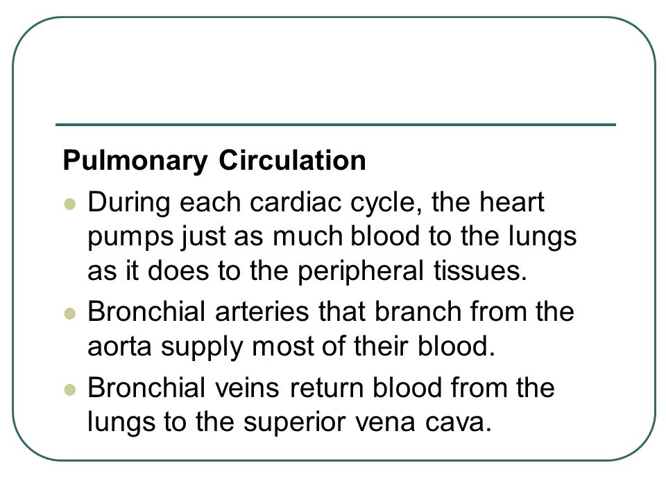 Pulmonary Circulation During each cardiac cycle, the heart pumps just as much blood to the lungs as it does to the peripheral tissues.