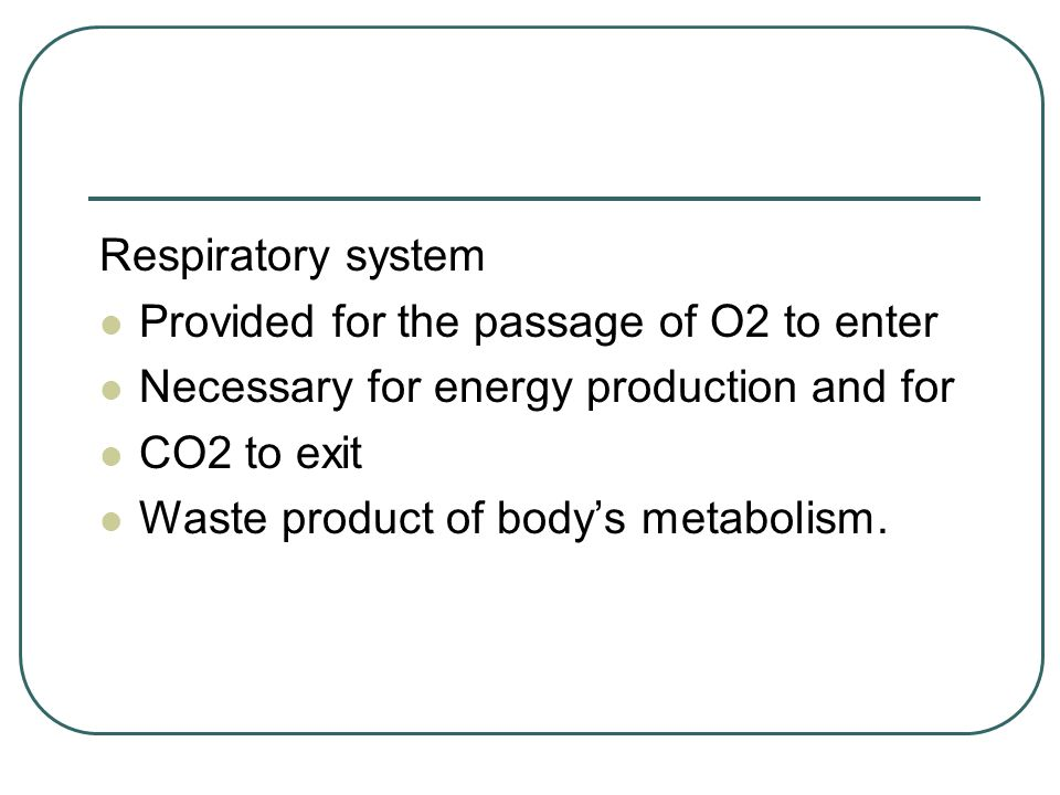 Respiratory system Provided for the passage of O2 to enter Necessary for energy production and for CO2 to exit Waste product of bodys metabolism.