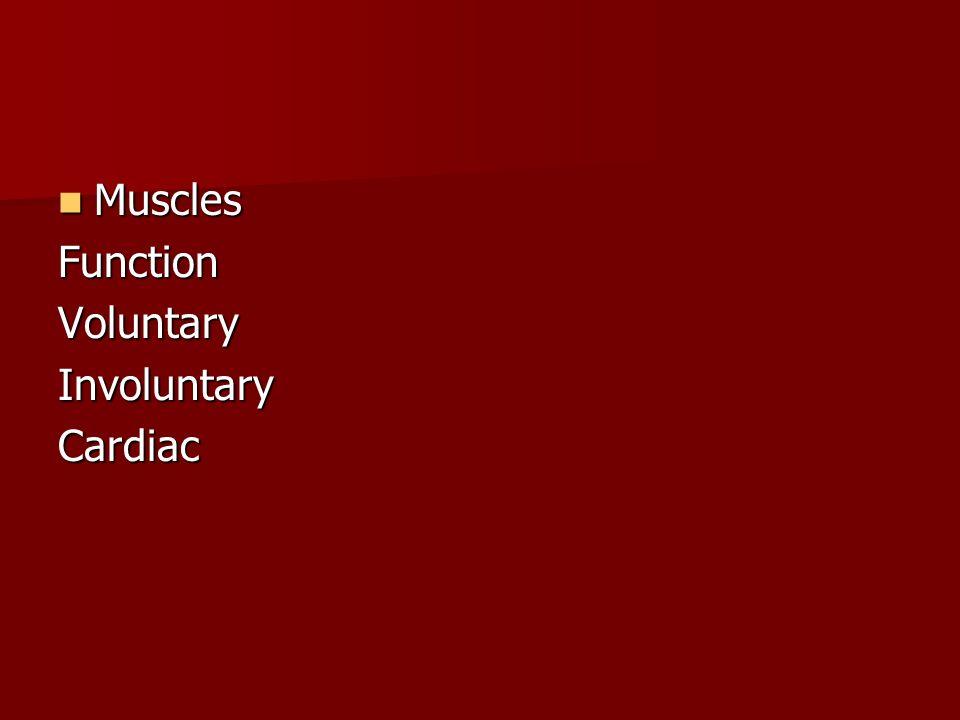 Muscles MusclesFunctionVoluntaryInvoluntaryCardiac