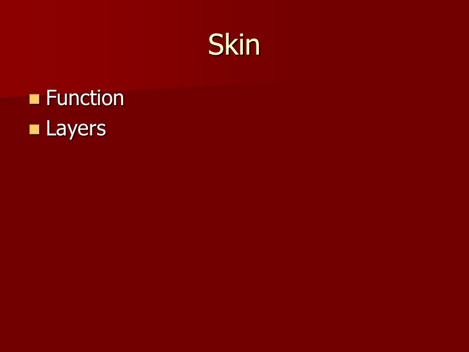 Skin Function Function Layers Layers