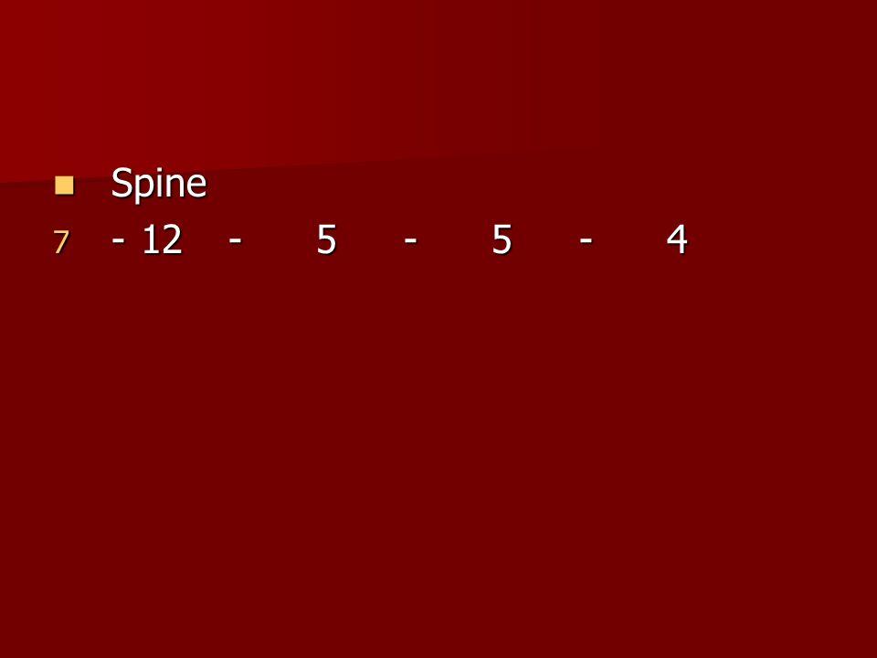 Spine Spine 7 -12-5-5-4