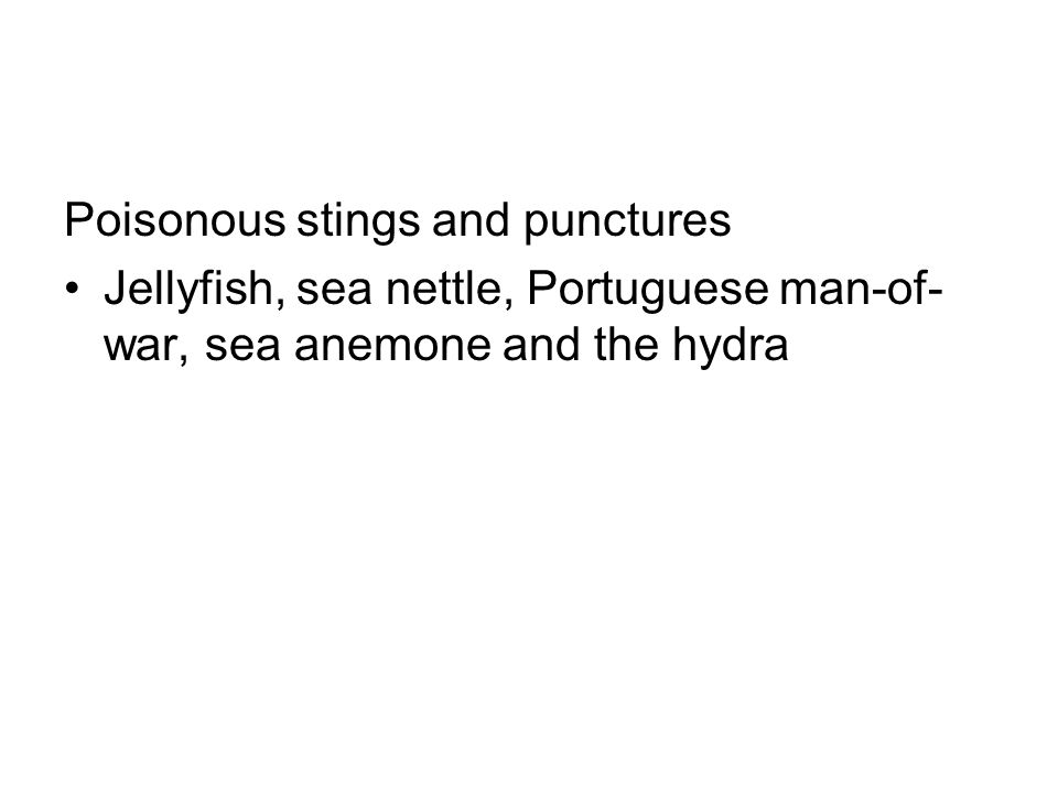 Poisonous stings and punctures Jellyfish, sea nettle, Portuguese man-of- war, sea anemone and the hydra